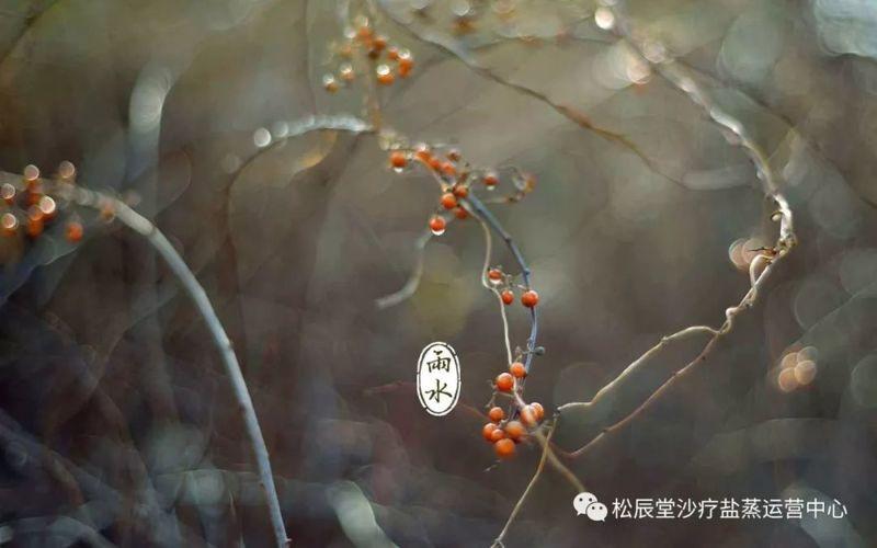 松辰堂国际沙疗助您春季祛湿邪