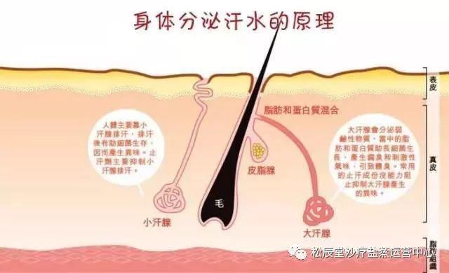 松辰堂国际告诉你沙疗后为什么不能洗澡